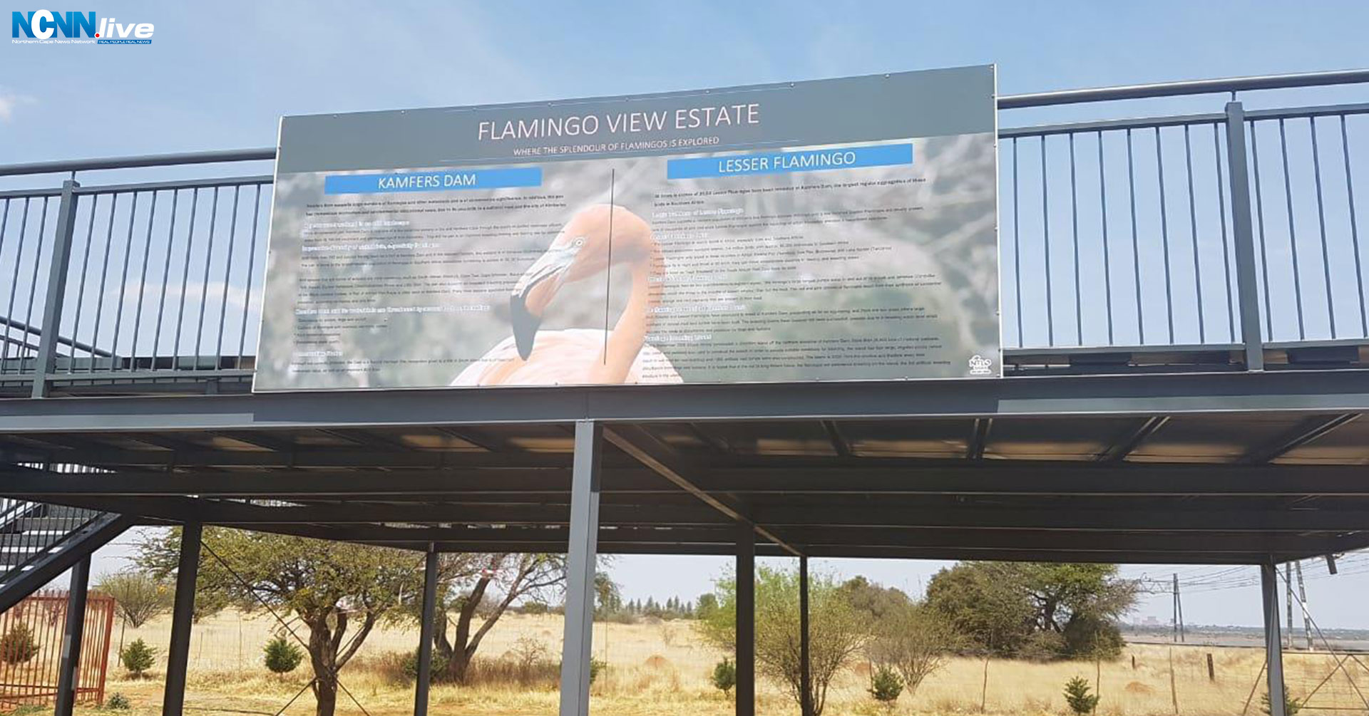 Flamingo View Kimberley Sol Plaatje
